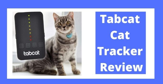 Tabcat Cat Tracker Review